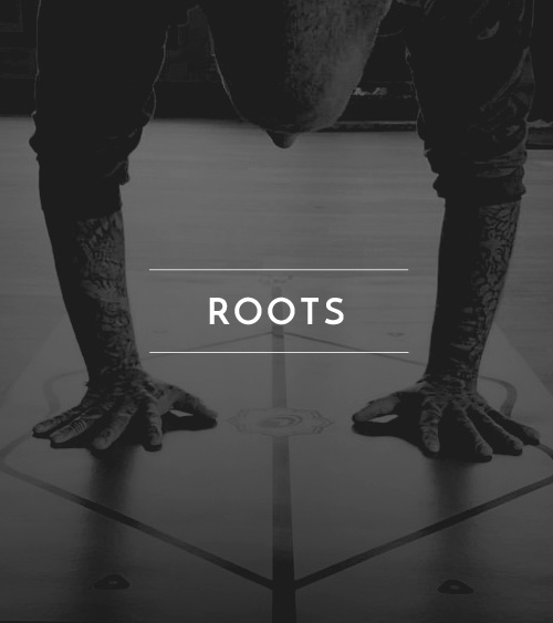 jai_classtypes_roots